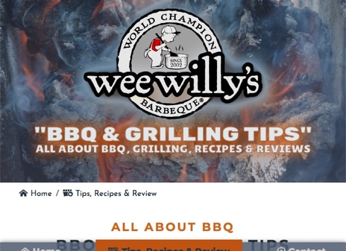 xHow To BBQ Grill Grilling BBQ Recipes Tips Reviews